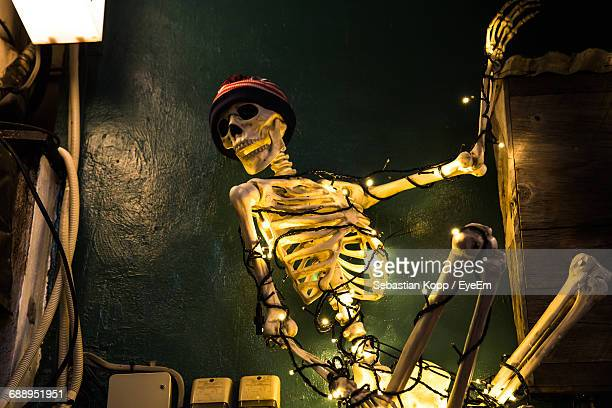 low angle view of halloween decoration - funny skeleton stock photos and pictures