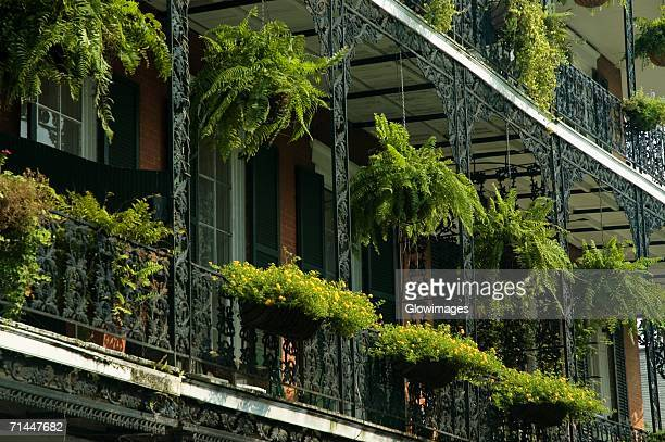 low angle view of hanging baskets on a building, new orleans, louisiana, usa - hanging basket stock pictures, royalty-free photos & images