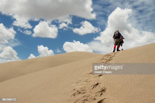 low angle view of hiker walking in desert - great sand dunes national park stock pictures, royalty-free photos & images
