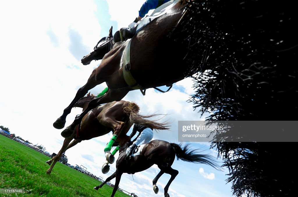 Low angle view of Horse Racing - Steeplechase : Stock Photo