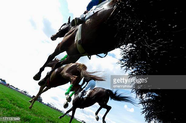 low angle view of horse racing - steeplechase - horse racing stock pictures, royalty-free photos & images