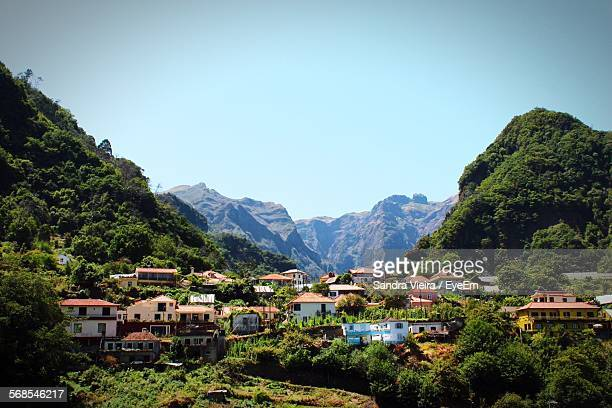 low angle view of houses at madeira island against clear sky - madeira island stock photos and pictures