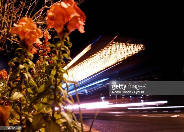 low angle view of illuminated bus driving at night - noam cohen stock pictures, royalty-free photos & images