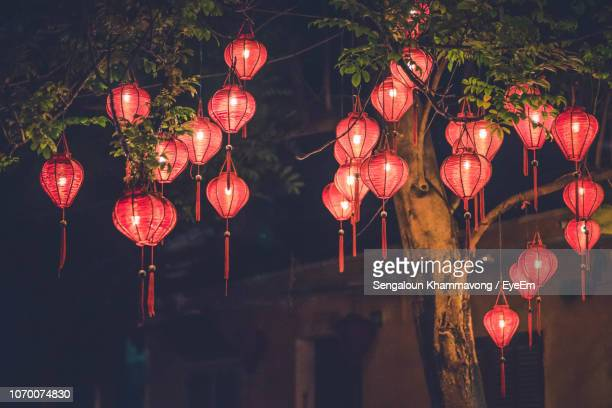 Low Angle View Of Illuminated Lanterns Hanging On Tree At Night