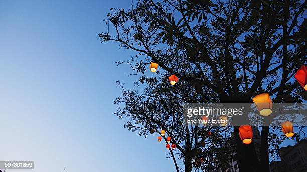 Low Angle View Of Illuminated Lanterns On Silhouette Tree Against Clear Sky