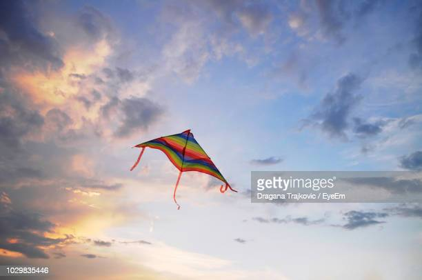 low angle view of kite against sky during sunset - kite stock pictures, royalty-free photos & images