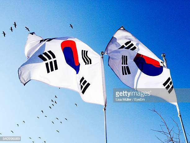Low Angle View Of Korean Flags Against Clear Sky