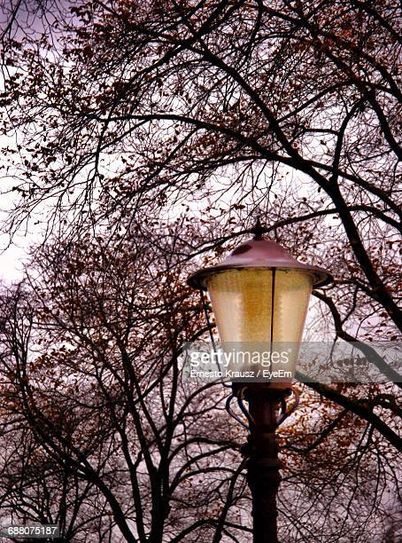 low angle view of lamp post - krausz stock-fotos und bilder