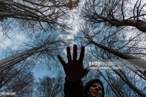 Low Angle View Of Man Gesturing Stop Sign Against Trees In Forest