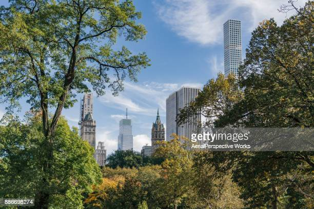 Low Angle view of Manhattan from Central park