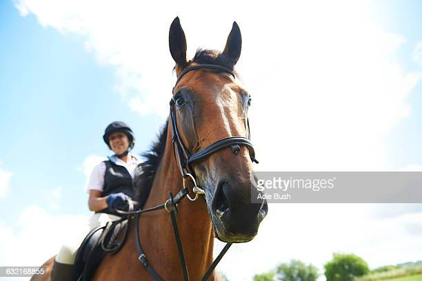 low angle view of mature woman on horseback looking at camera - riding hat stock pictures, royalty-free photos & images