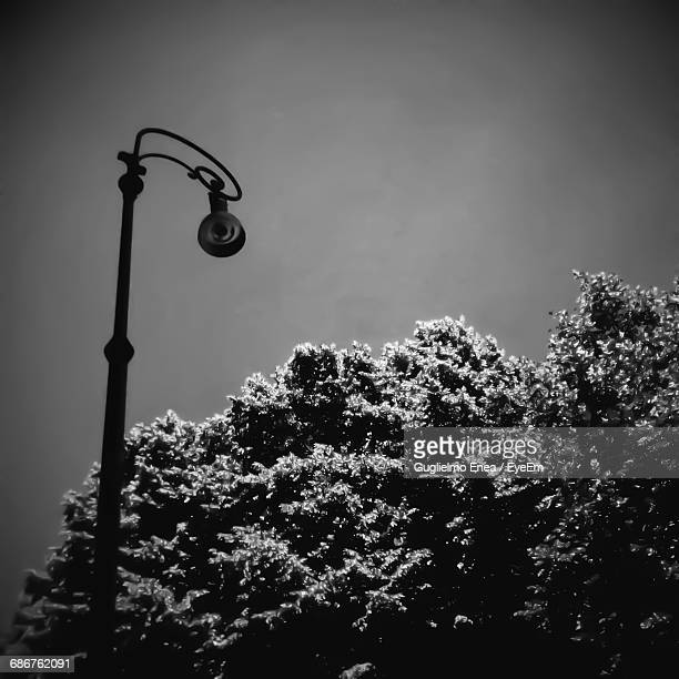 Low Angle View Of Metallic Lamp Post By Tree Against Sky