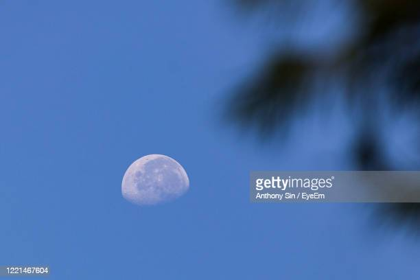 low angle view of moon against blue sky - focus on background stock pictures, royalty-free photos & images