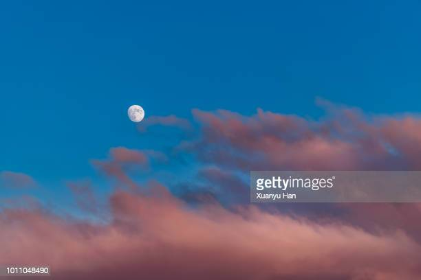 low angle view of moon in sky - pink moon stock pictures, royalty-free photos & images