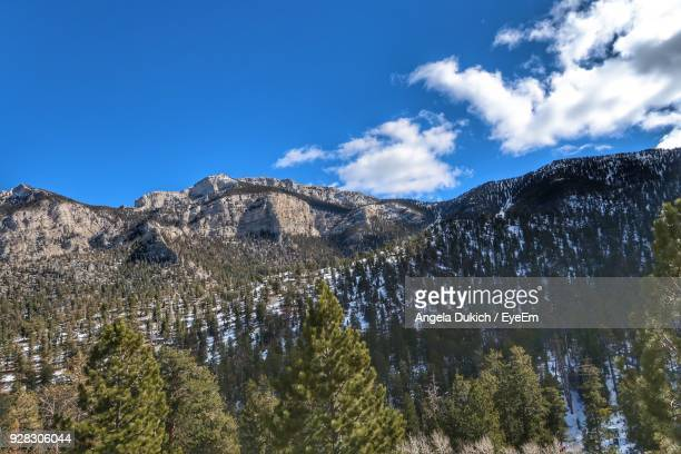 low angle view of mountain against blue sky - mt charleston stock photos and pictures