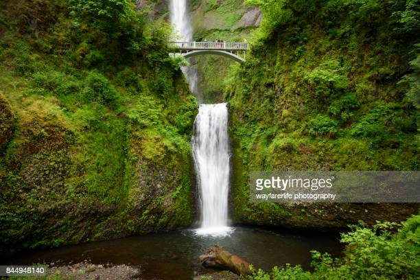 low angle view of multnomah falls and benson bridge in columbia river gorge, oregon - hood river valley stock photos and pictures
