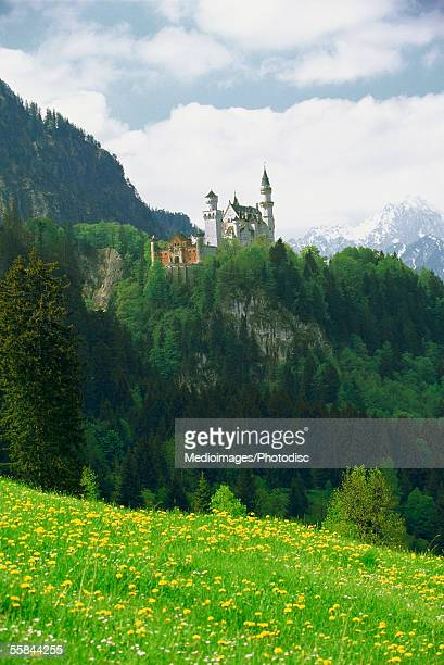 low angle view of neuschwanstein castle, romantic route road, germany - neuschwanstein castle stock pictures, royalty-free photos & images