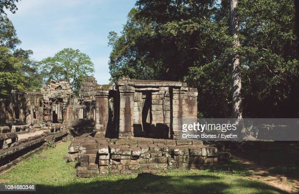 low angle view of old temple against tree - bortes stock pictures, royalty-free photos & images