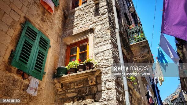 Low Angle View Of Potted Plants Against House
