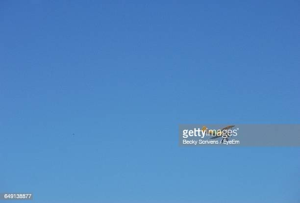 Low Angle View Of Propeller Plane Flying Against Clear Blue Sky