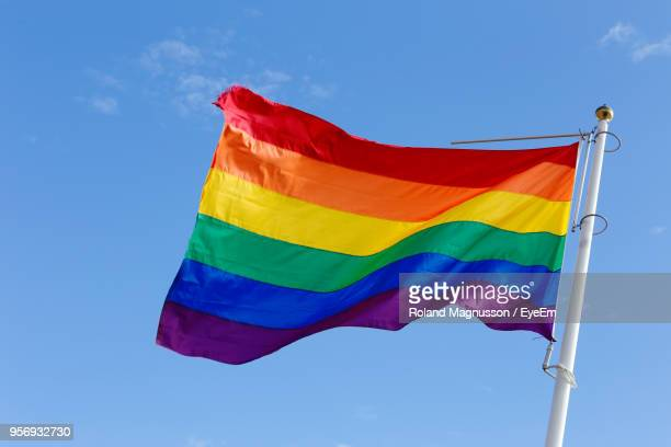 low angle view of rainbow flags against sky - regenbogenfahne stock-fotos und bilder
