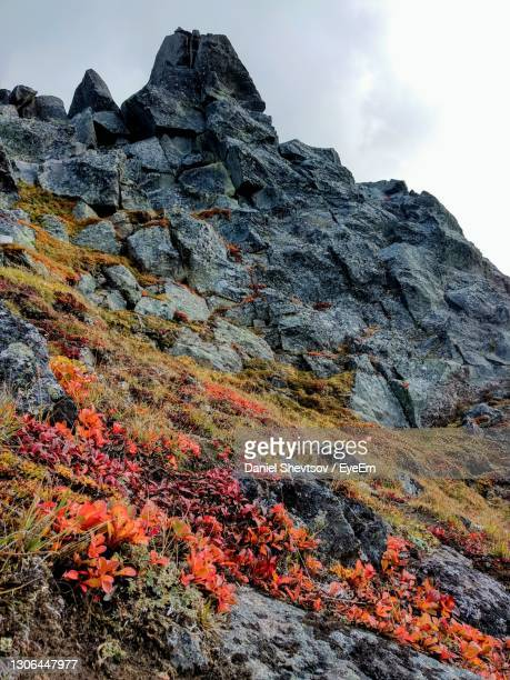 low angle view of rocks on mountain against sky - tundra stock-fotos und bilder