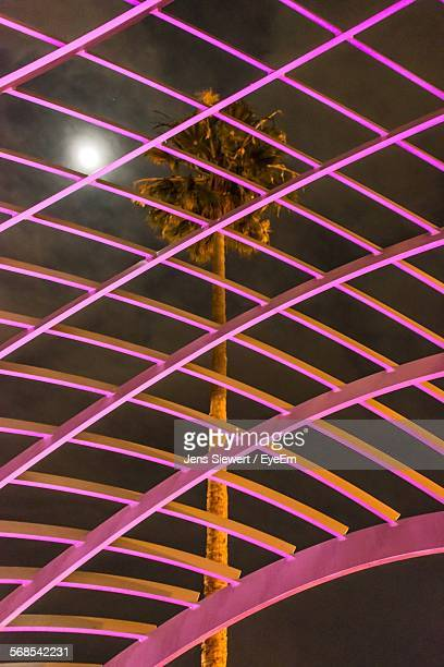 Low Angle View Of Roof Against Palm Tree During Dusk