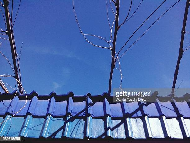 Low Angle View Of Roof And Branches Against Blue Sky