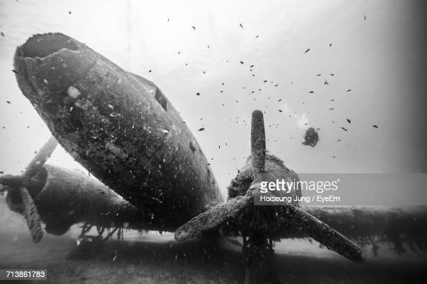 Low Angle View Of Scuba Diver Swimming Over Airplane Wreck