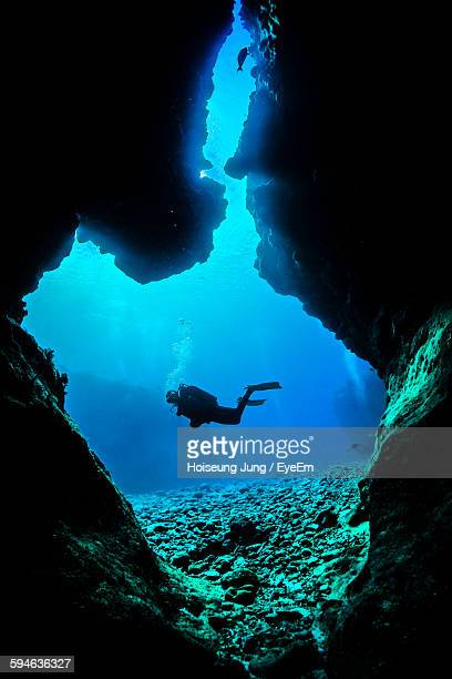 Low Angle View Of Scuba Divers Swimming In Sea