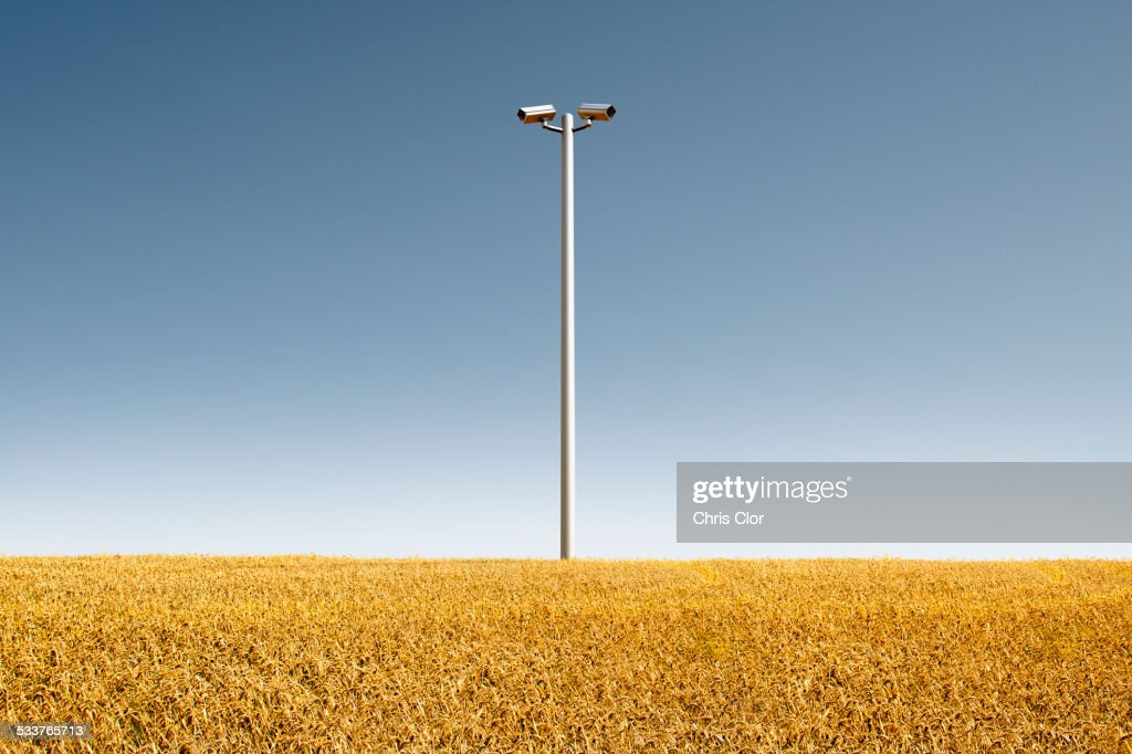 Low angle view of security cameras in crop field : Foto stock