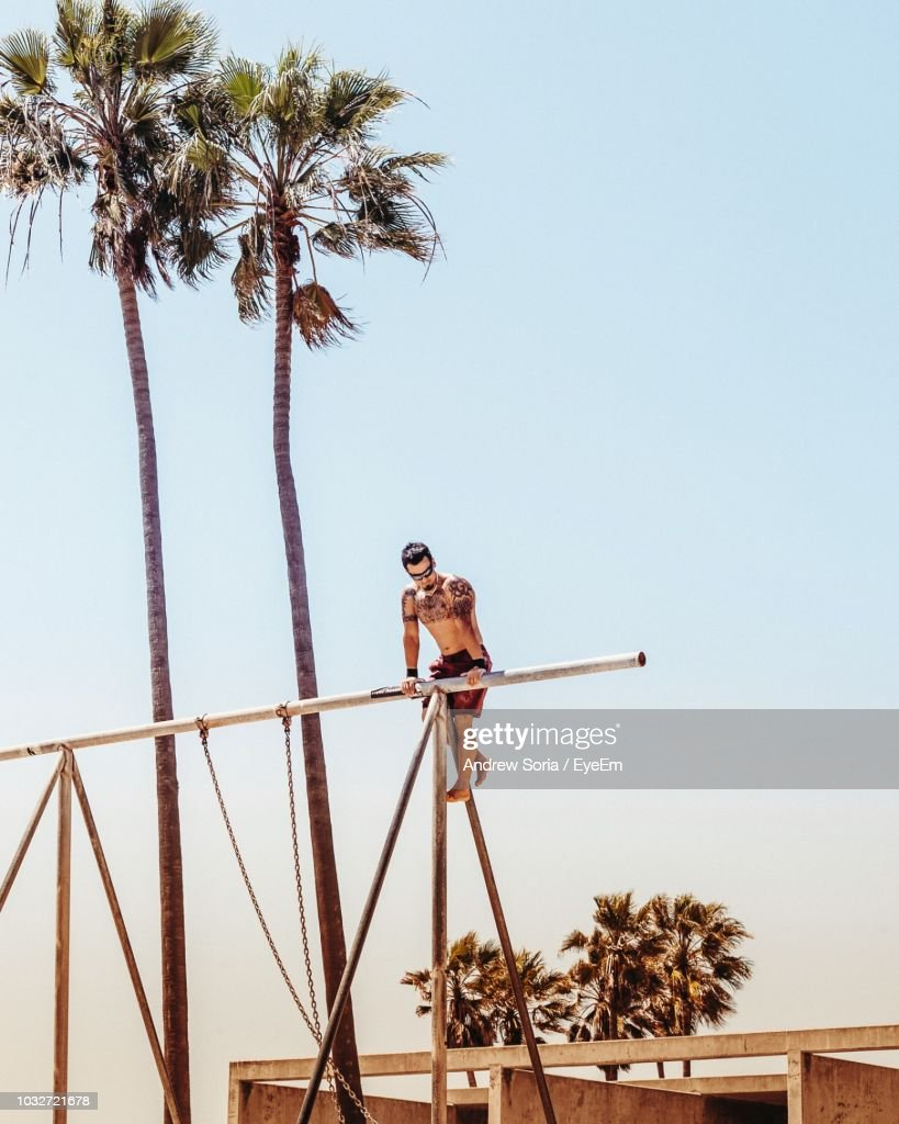 Low Angle View Of Shirtless Man Climbing On Metallic Rods By Coconut Palm Trees Against Clear Sky : Stock Photo