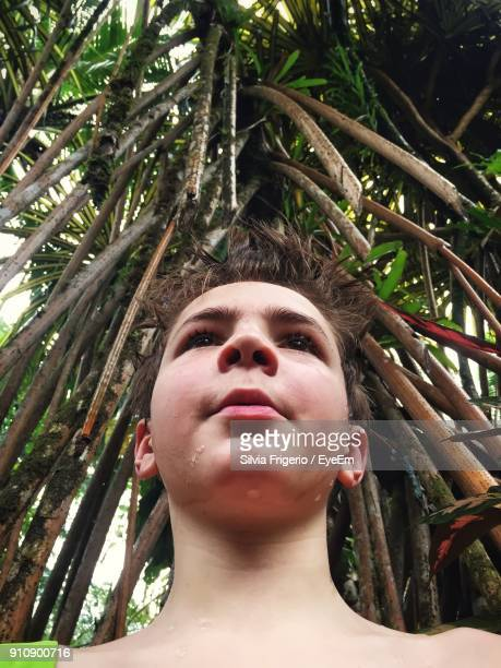 Low Angle View Of Shirtless Teenage Boy Looking Away While Standing By Tree