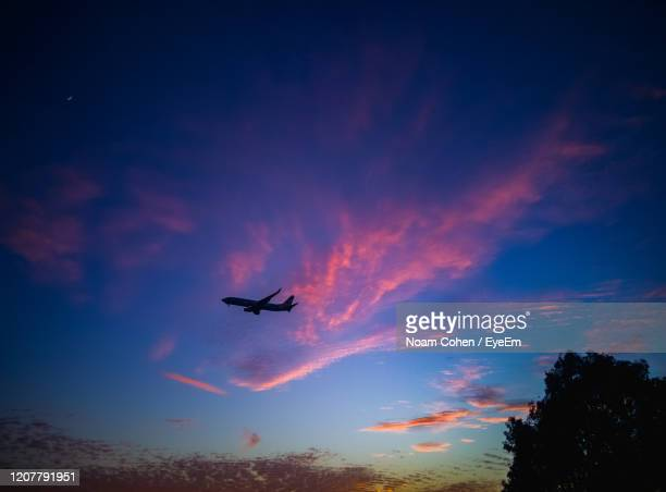 low angle view of silhouette airplane against sky during sunset - millennial pink stock pictures, royalty-free photos & images