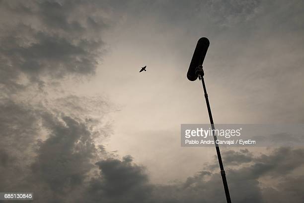 Low Angle View Of Silhouette Bird Flying By Microphone Against Sky At Dusk