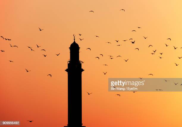 low angle view of silhouette birds flying against clear sky during sunset - floating mosque stock pictures, royalty-free photos & images