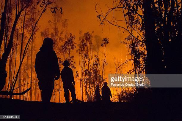 low angle view of silhouette firefighters and trees during forest fire - forest fire stock pictures, royalty-free photos & images