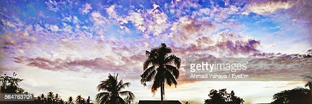 Low Angle View Of Silhouette Palm Trees Against Clouds