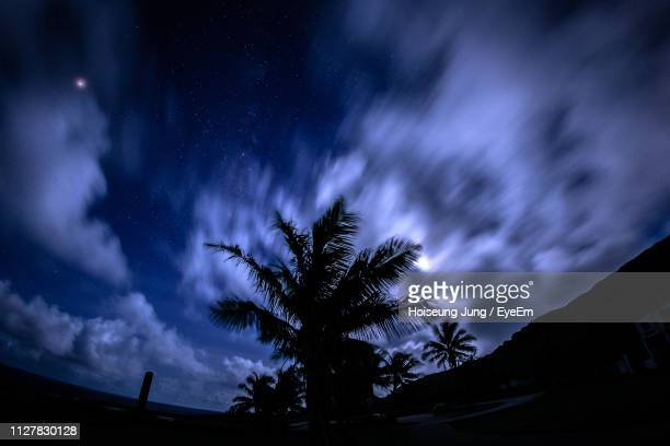 low angle view of silhouette palm trees against sky at night - saipan stock pictures, royalty-free photos & images