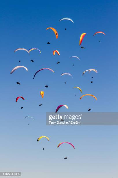 low angle view of silhouette people paragliding against clear blue sky - low flying aircraft stock pictures, royalty-free photos & images