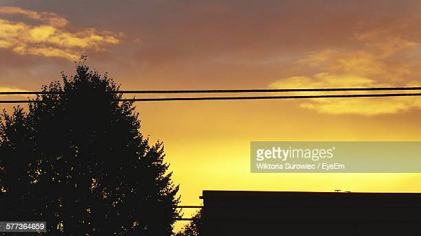 Low Angle View Of Silhouette Tree And Power Cables Against Sky During Sunset