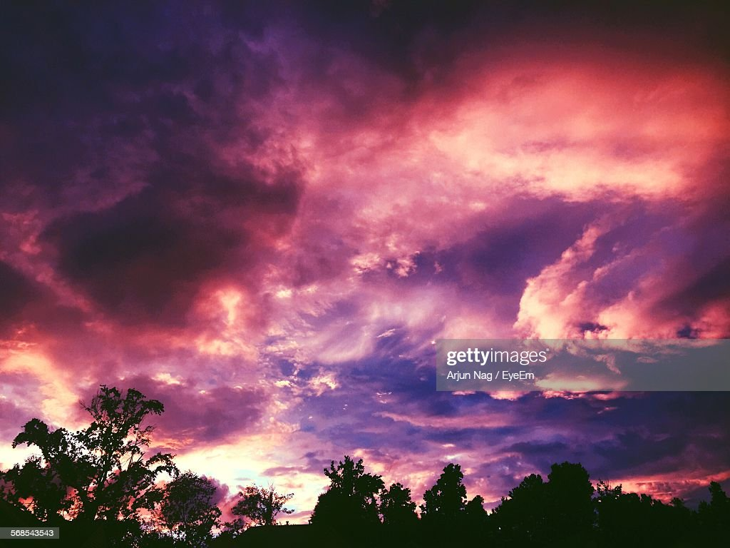 Low Angle View Of Silhouette Trees Against Cloudy Sky During Dusk : Stock Photo