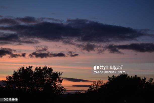 low angle view of silhouette trees against dramatic sky - プール湾 ストックフォトと画像