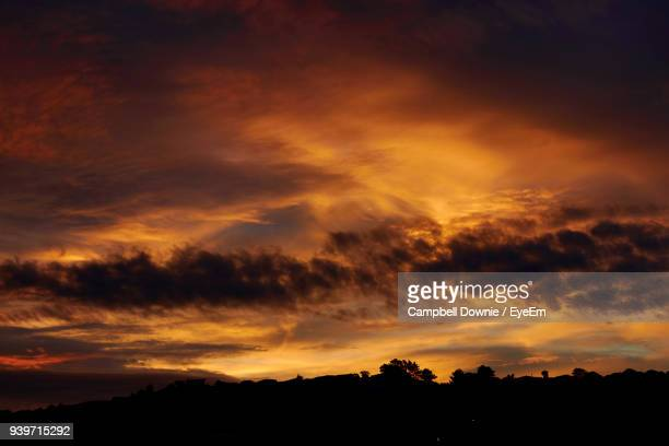 low angle view of silhouette trees against dramatic sky - campbell downie stock pictures, royalty-free photos & images