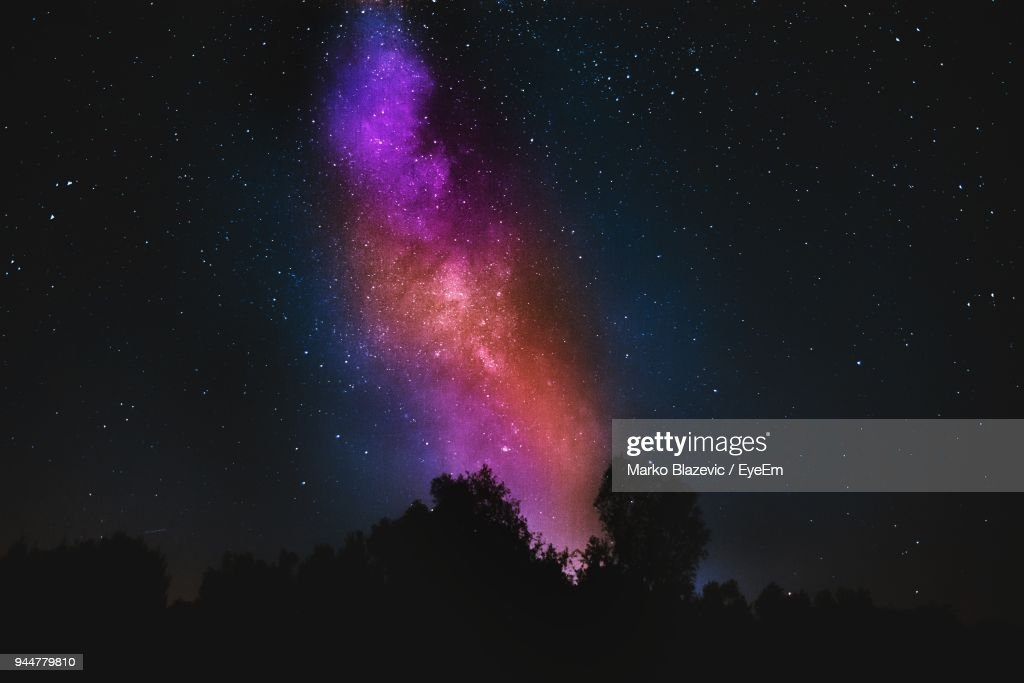 Low Angle View Of Silhouette Trees Against Sky At Night : Stock Photo