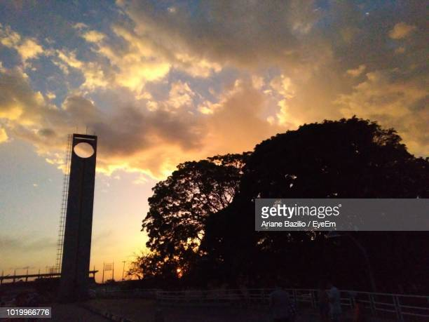 low angle view of silhouette trees against sky during sunset - amapá state ストックフォトと画像