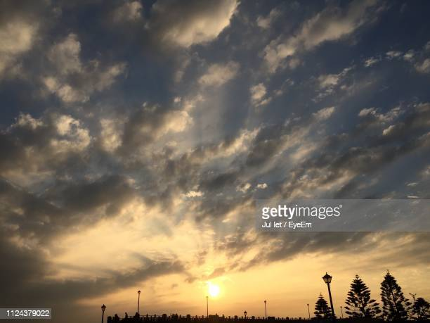 low angle view of silhouette trees against sky during sunset - jul photos et images de collection