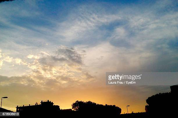 low angle view of silhouette trees against sky during sunset - frau photos et images de collection