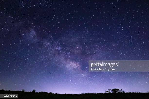 low angle view of silhouette trees against star field at night - 長野市 ストックフォトと画像