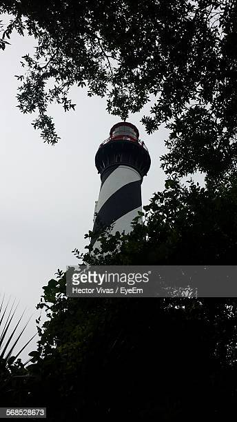 low angle view of silhouette trees in front of st augustine light against clear sky - st augustine lighthouse - fotografias e filmes do acervo